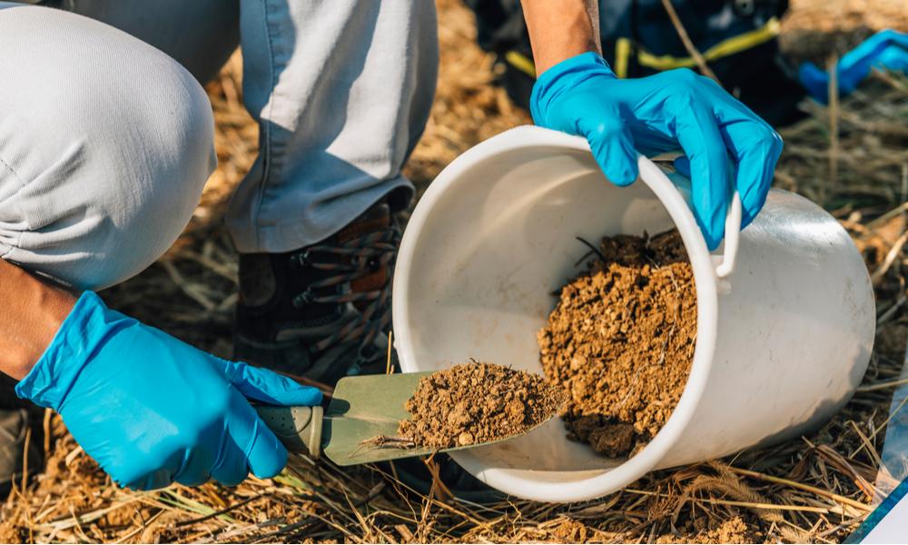 Soil Fertilizer Pesticide