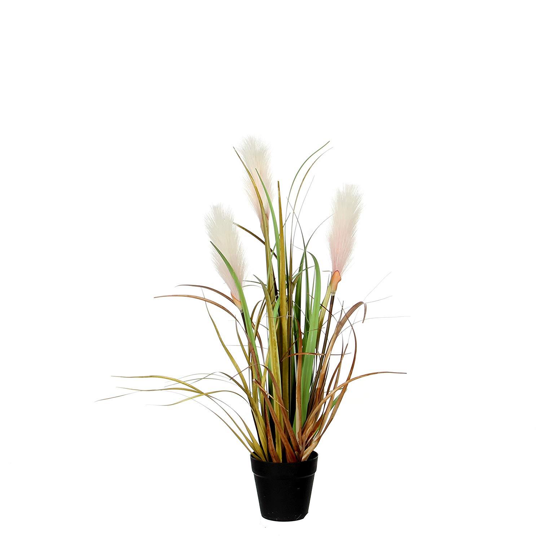 عشب بلوما فوكستيل - كبير 'نباتات اصطناعية حشيش