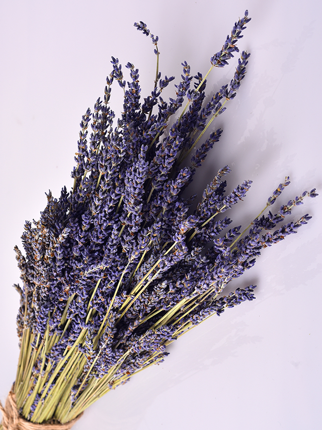 Lavender 'Wholesale Flowers Dried Flowers