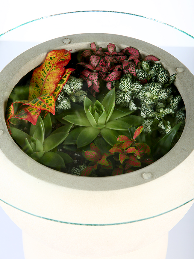 Terrarium Table Garden Furniture Furniture