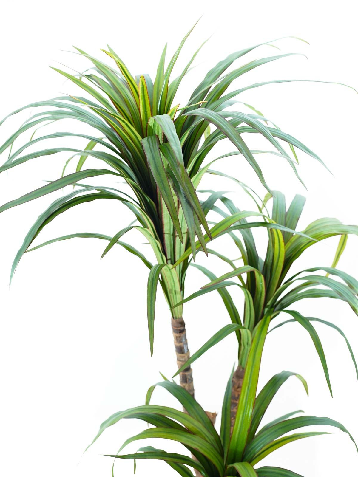 Dracaena Fragrans Tree Small Artificial Plants Hanging