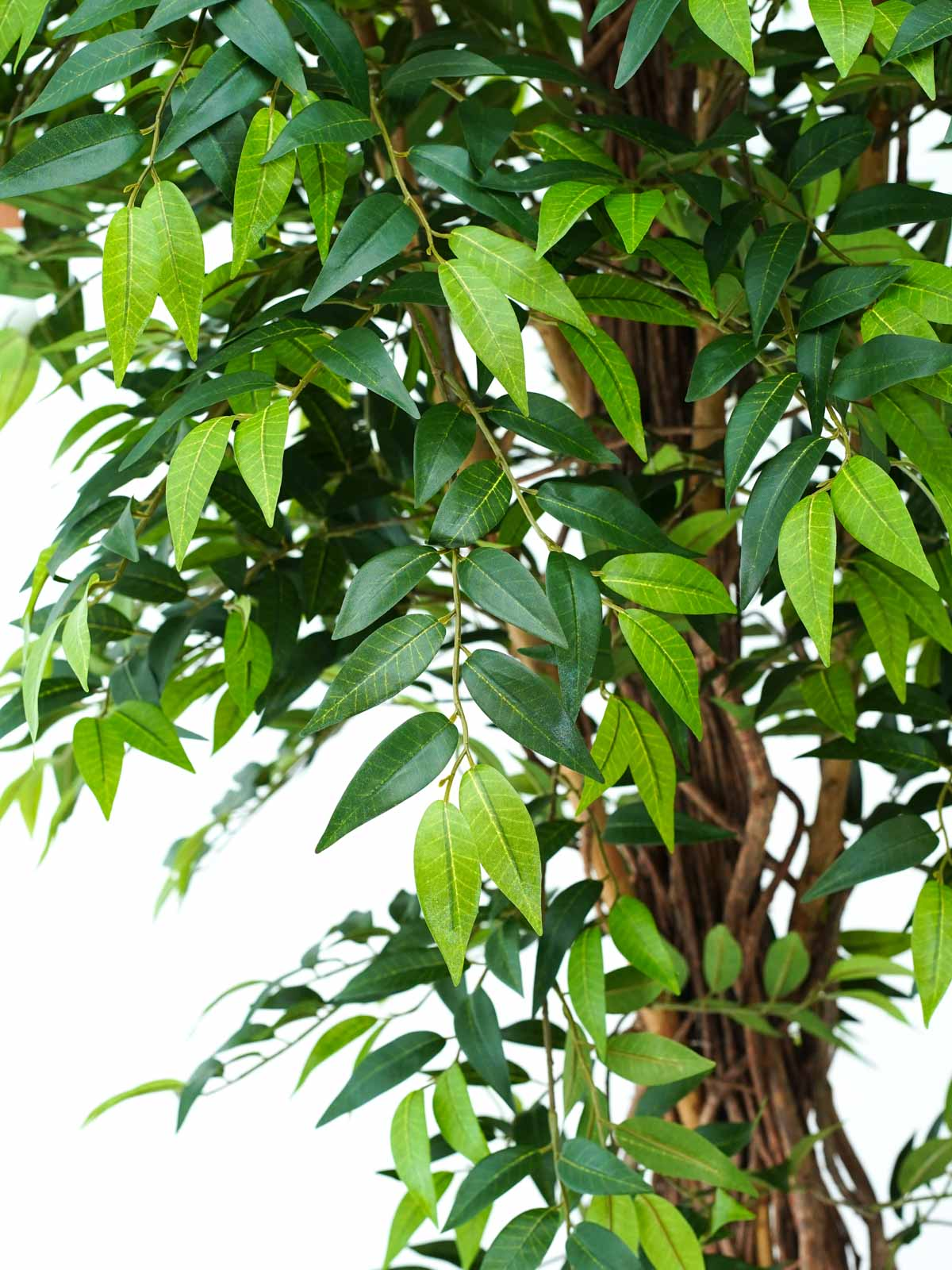 France Ficus Lion Liana Tree Large Artificial Plants Trees