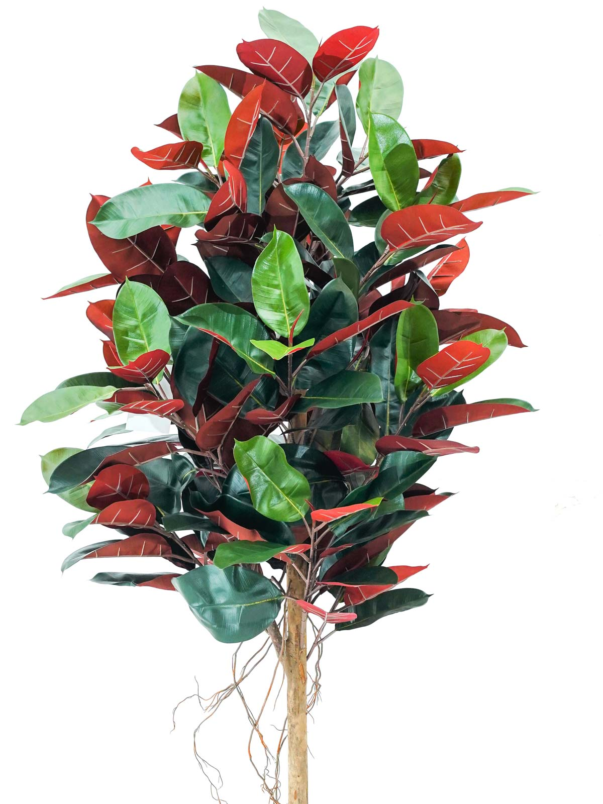 Rubber Plant Tree Medium Artificial Plants Trees