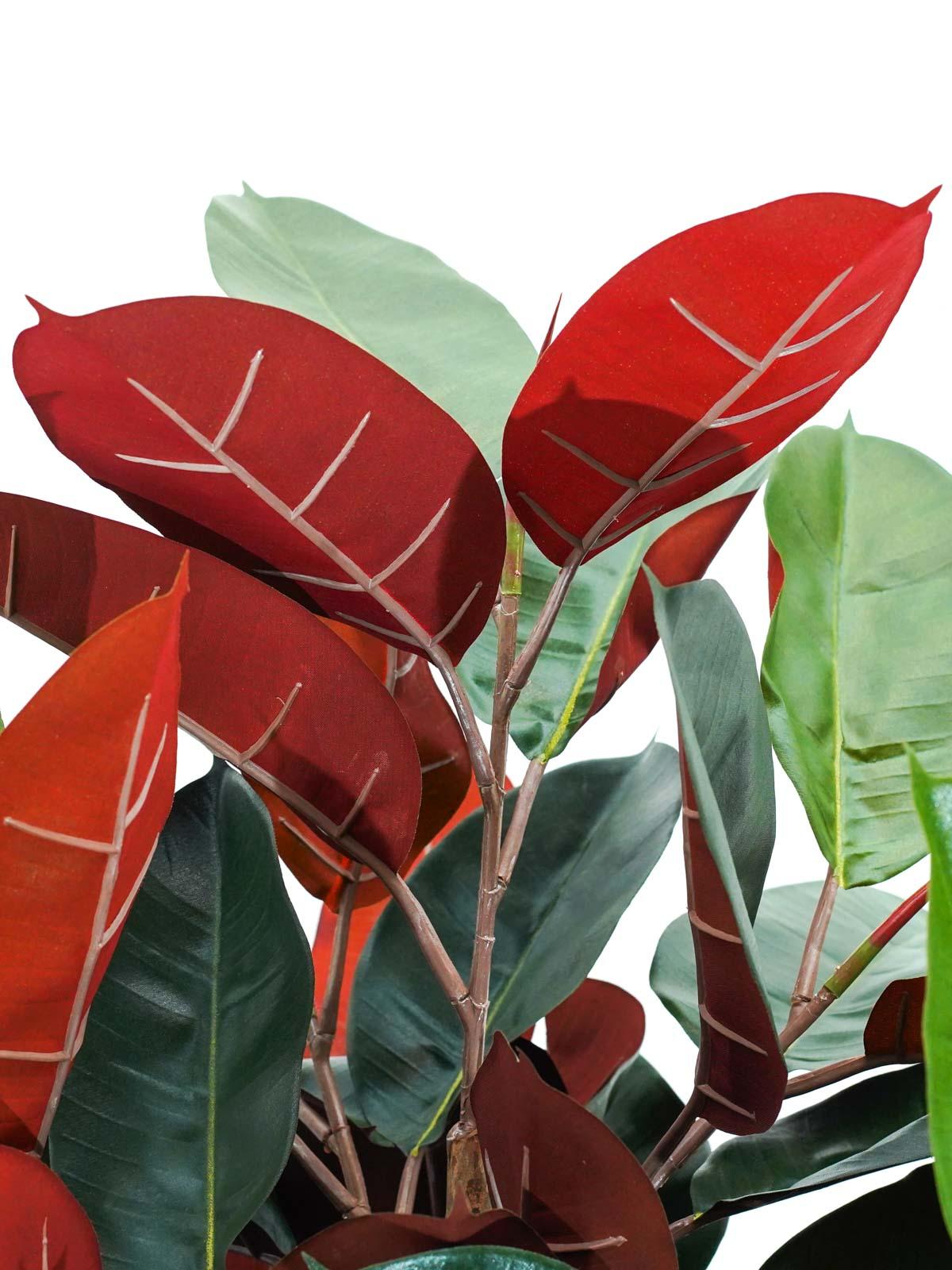 شجرة المطاط - كبير نباتات اصطناعية أشجار
