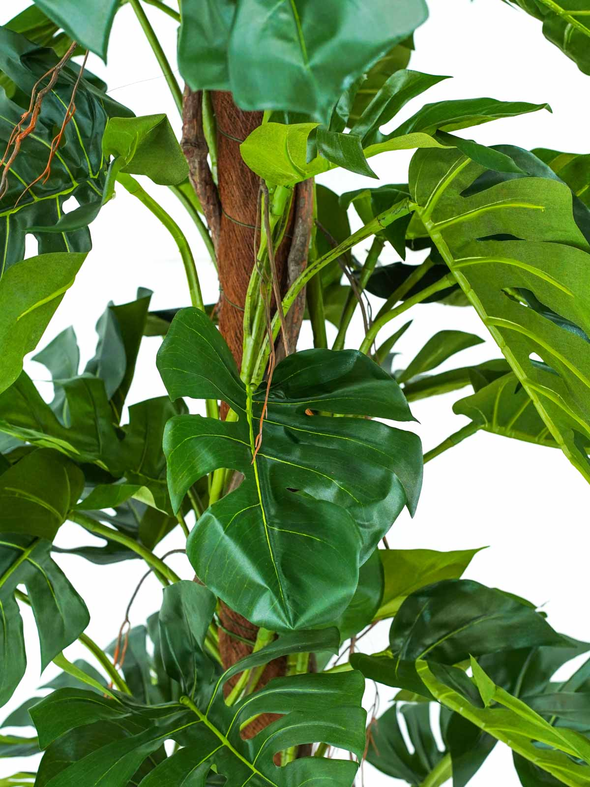 A Split Philo on Pole Tree Small Artificial Plants Trees
