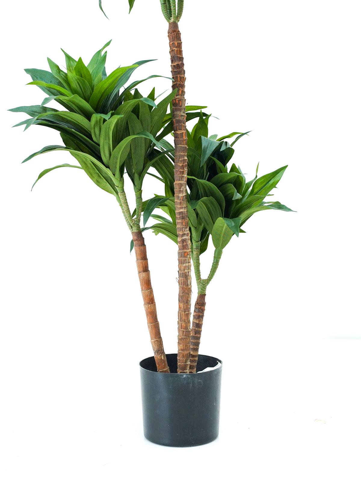 شجرة دراسينا فراجرانس - صغير 'نباتات اصطناعية أشجار