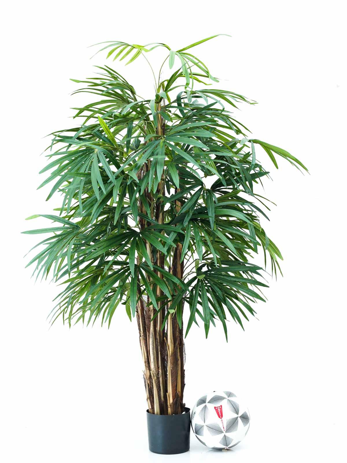 شجرة بامبو - كبير نباتات اصطناعية أشجار