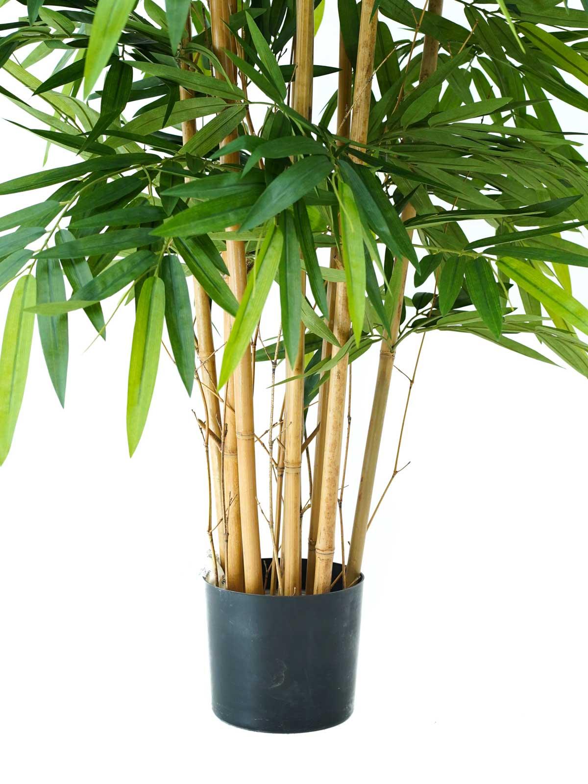 بامبو - كبير نباتات اصطناعية أشجار