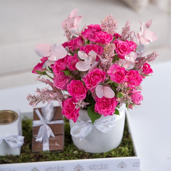 ستيلا 'زهور مع قاعدة زهور مع قاعدة