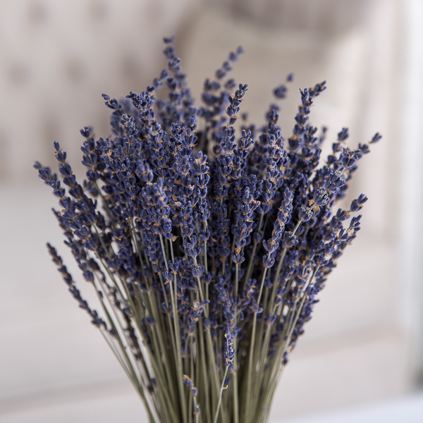 Lavender 'Flower with Base With Base