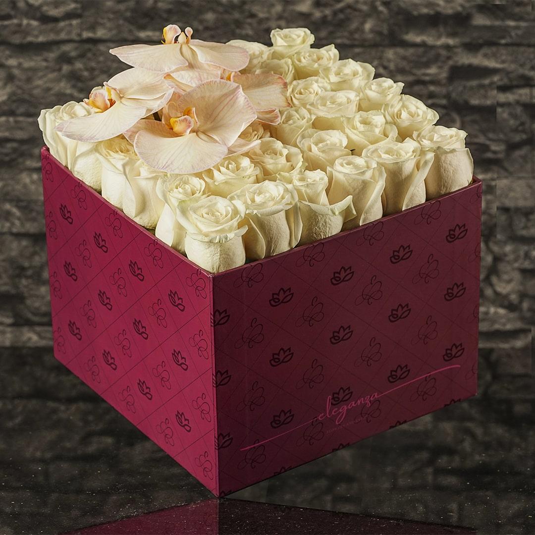 Bloom Box with Orchids زهور مع قاعدة زهور مع قاعدة