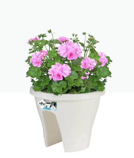 Carsica Flower Bridge 30cm White 'Pots & Vases Plastic Pots