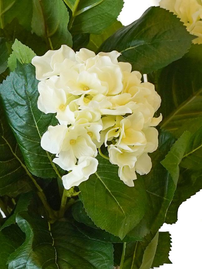 هايدرنجا  نباتات اصطناعية زهور