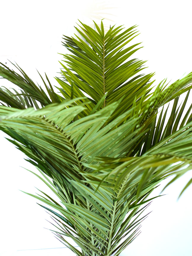 Phoenix Canari Palm Artificial Plants Trees