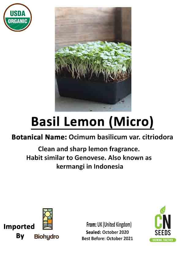 Basil Lemon - Micro Seeds Micro Greens