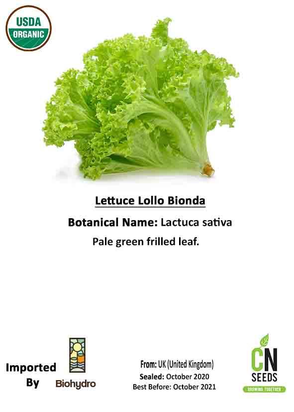 خس لولو بيوندا 'بذور فواكه وخضراوات