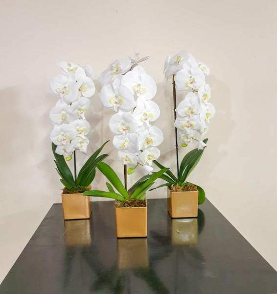 زهور الأوركيد الاصطناعية نباتات اصطناعية زهور