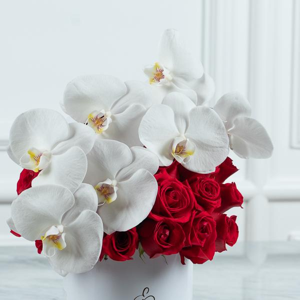 بلوم بوكس الخاص 1 زهور مع قاعدة زهور مع قاعدة