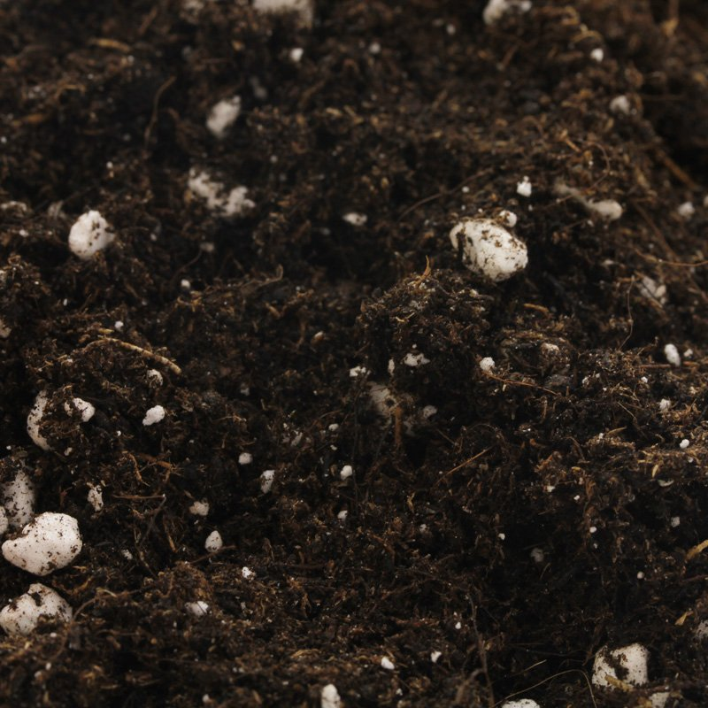 Organic ALL•MIX® Potting Soil 20L Online
