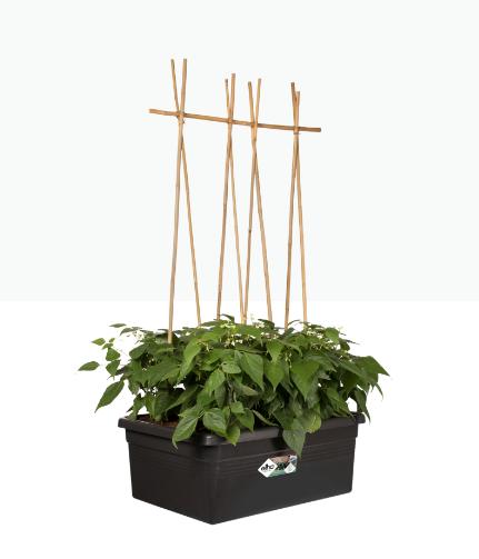 Green Basics Movable Garden Black Online