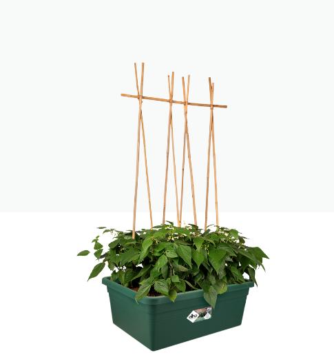 Green Basics Movable Garden Green Online