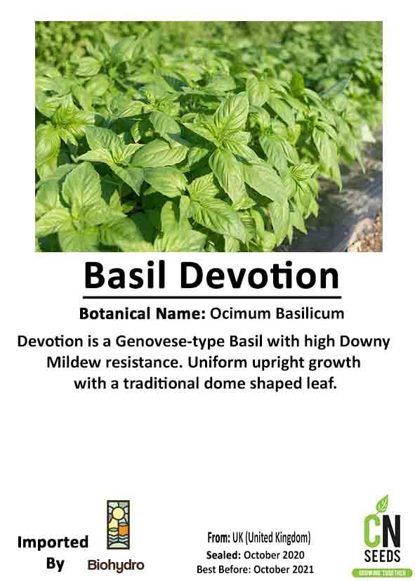 Organic Basil Devotion DMR Online
