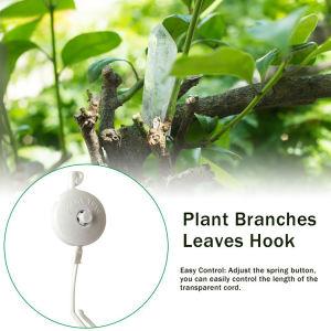 يويو دعم النبات Online