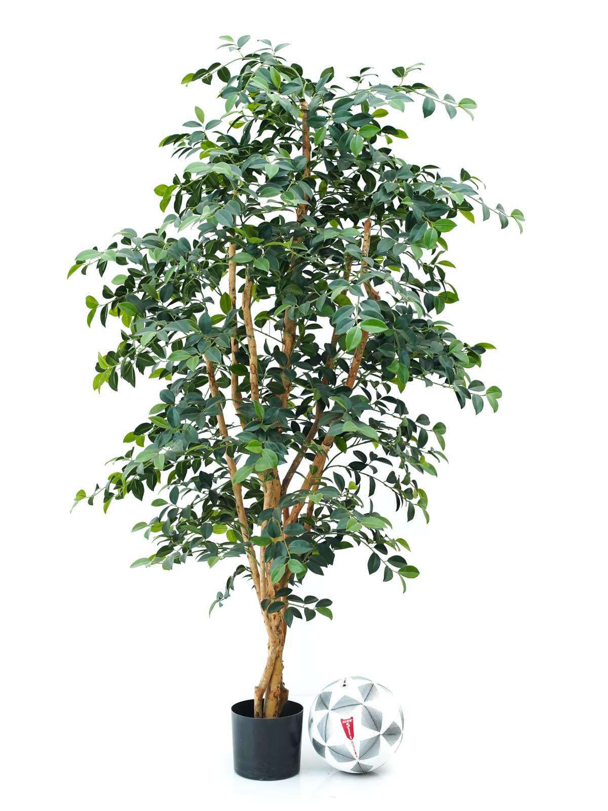 Sazanka Tree Large Shopping