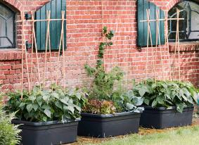Green Basics Movable Garden Black Shopping