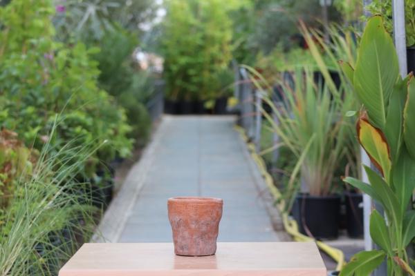 Nature Terra Pot Pots & Vases