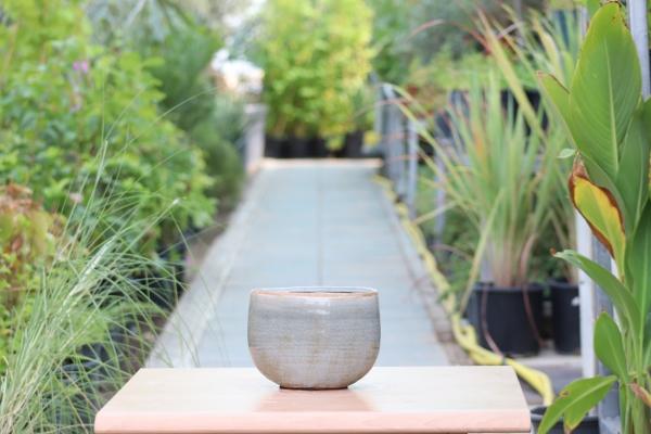 Iris Mint Pot 'Pots & Vases'