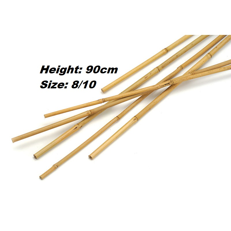 Bamboo Cane 90cm 10pc Gardening Accessories