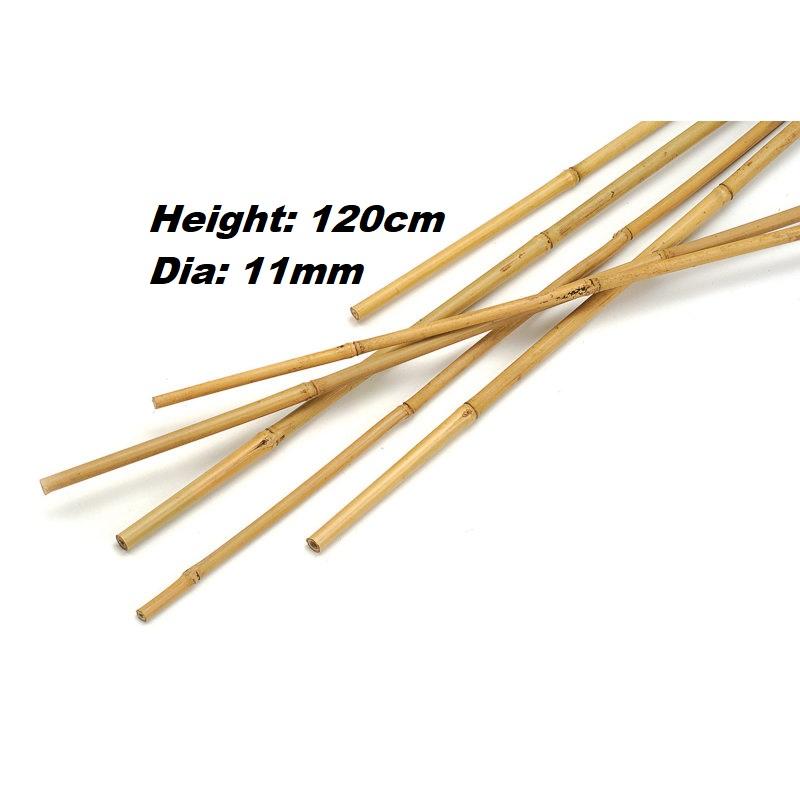 Bamboo Cane 120cm 10pc Gardening Accessories