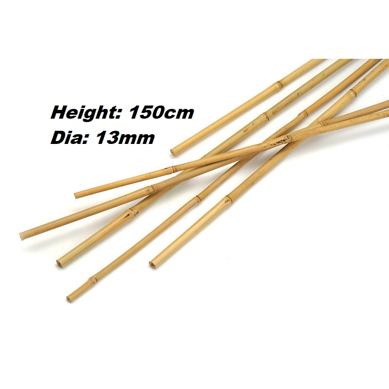 Bamboo Cane 150cm 10pc Gardening Accessories