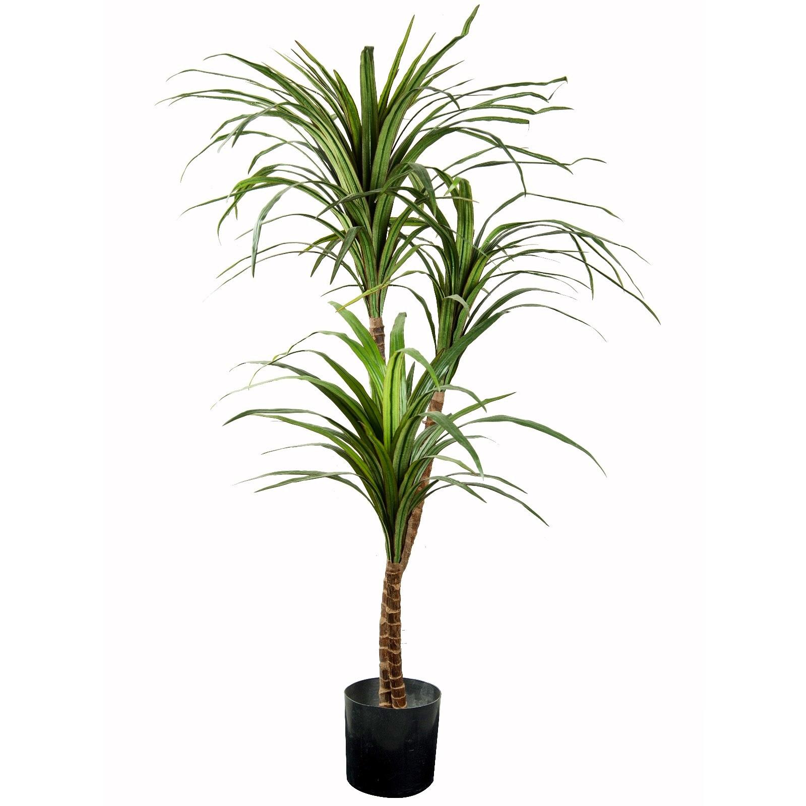 Dracaena Fragrans Tree Small Artificial Plants