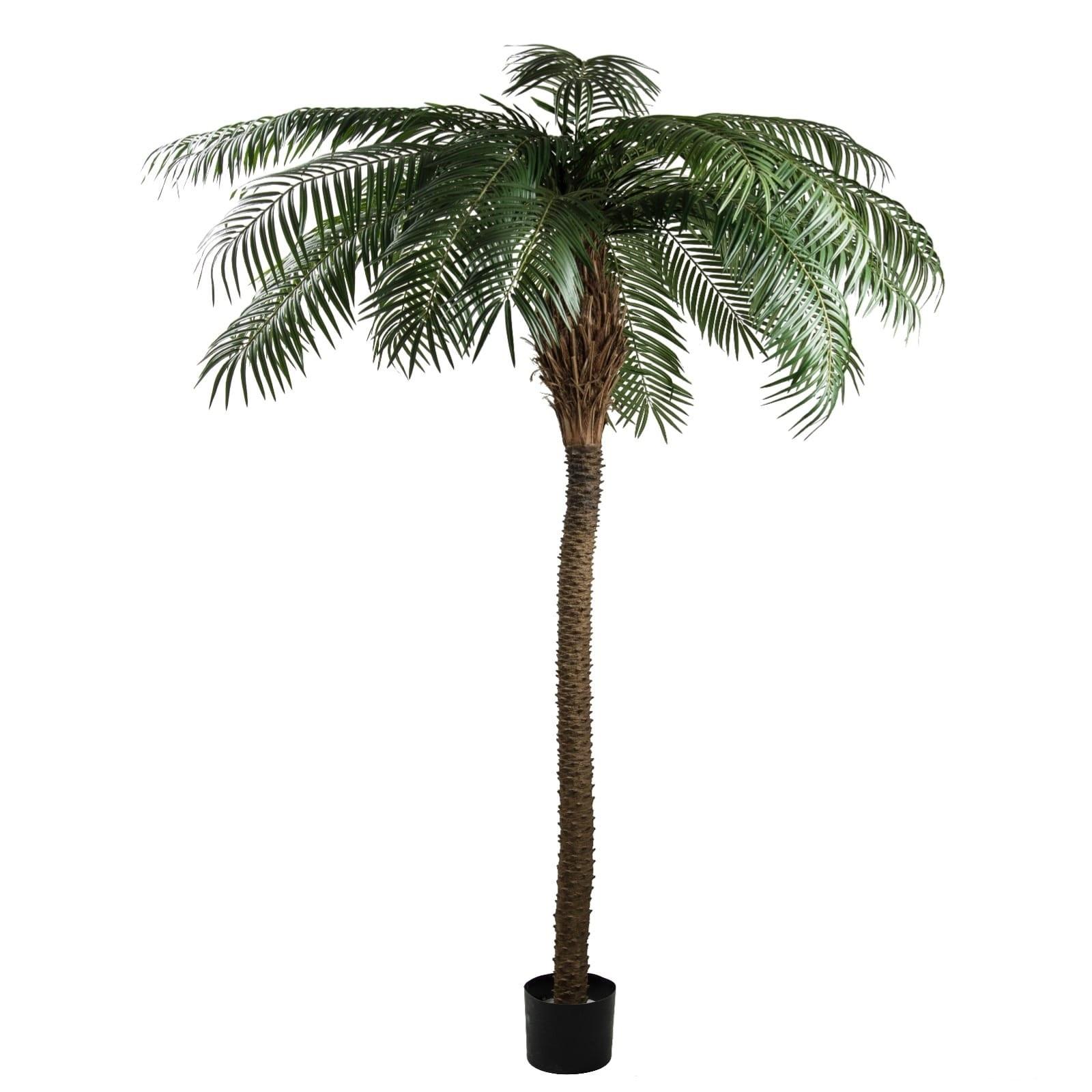 Phoenix Palm 2 Artificial Plants