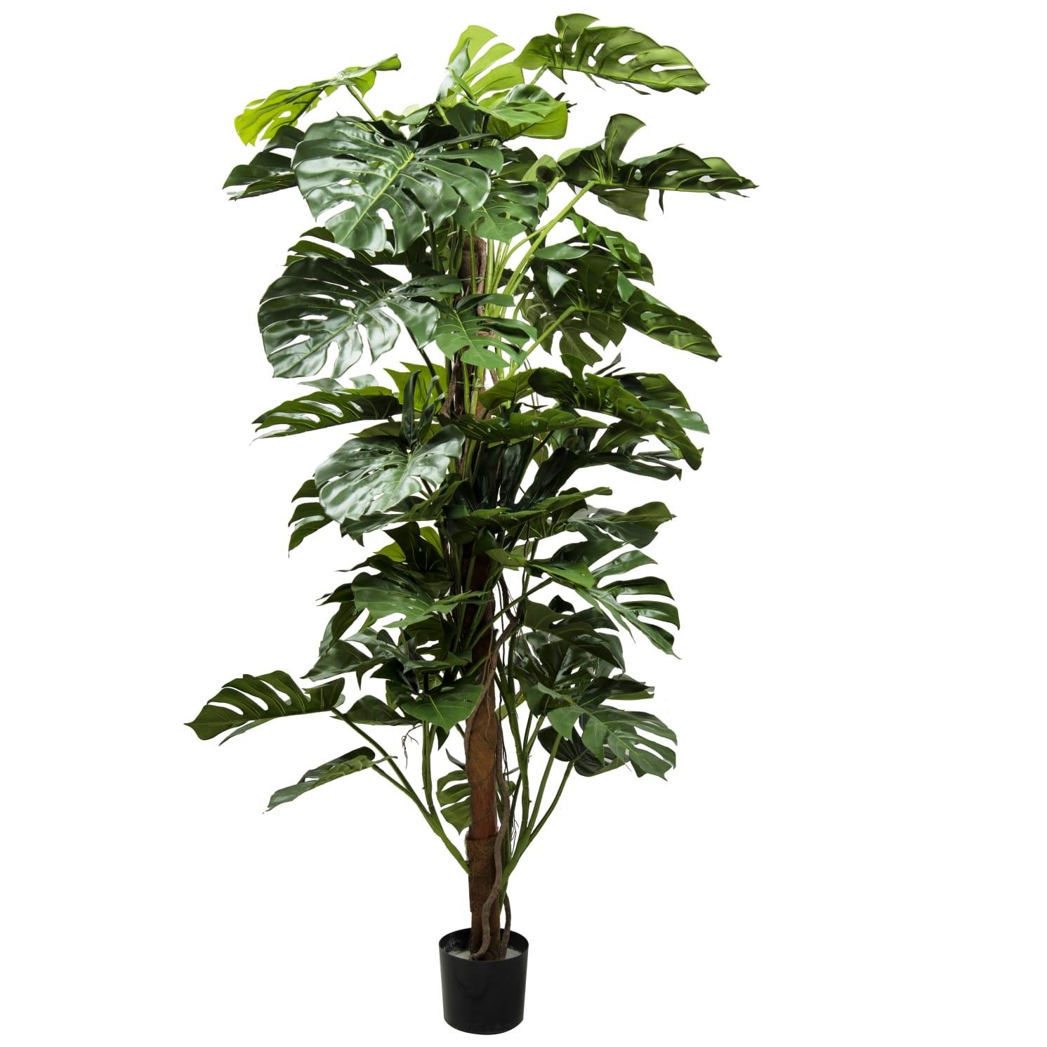 A Split Philo On Pole Tree Large 'Artificial Plants'