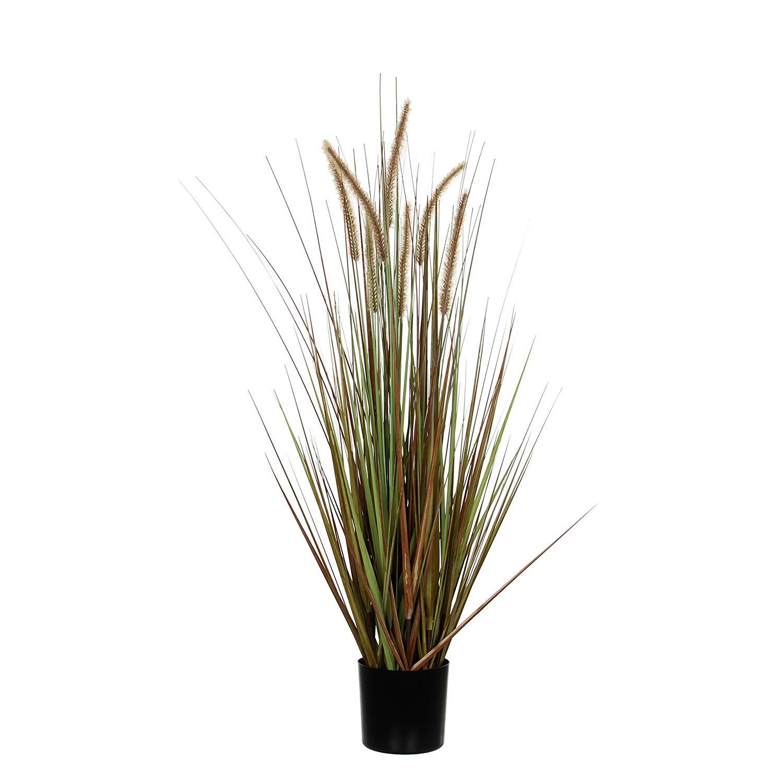 Dogtail Grass Purple M 'Artificial Plants'