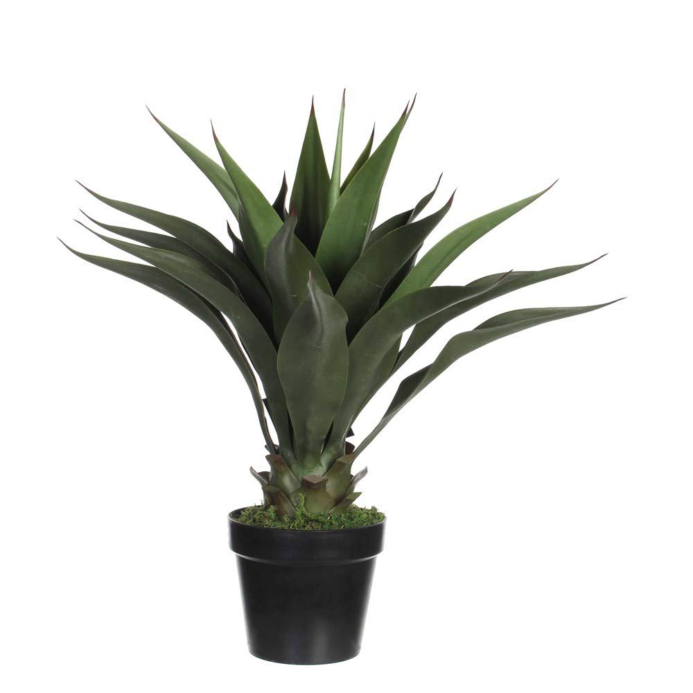 Agave M Artificial Plants