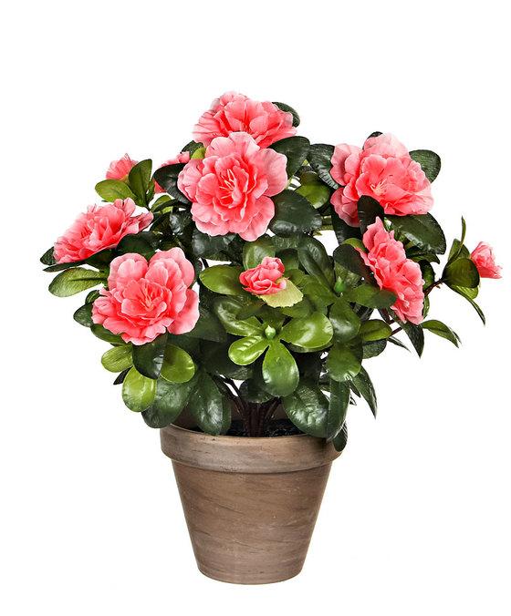 Azalea Peach in Pot Stan Grey Artificial Plants
