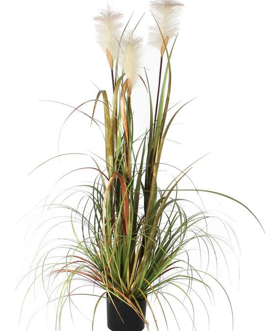 عشب بلوما فوكستيل - كبير 'نباتات اصطناعية'