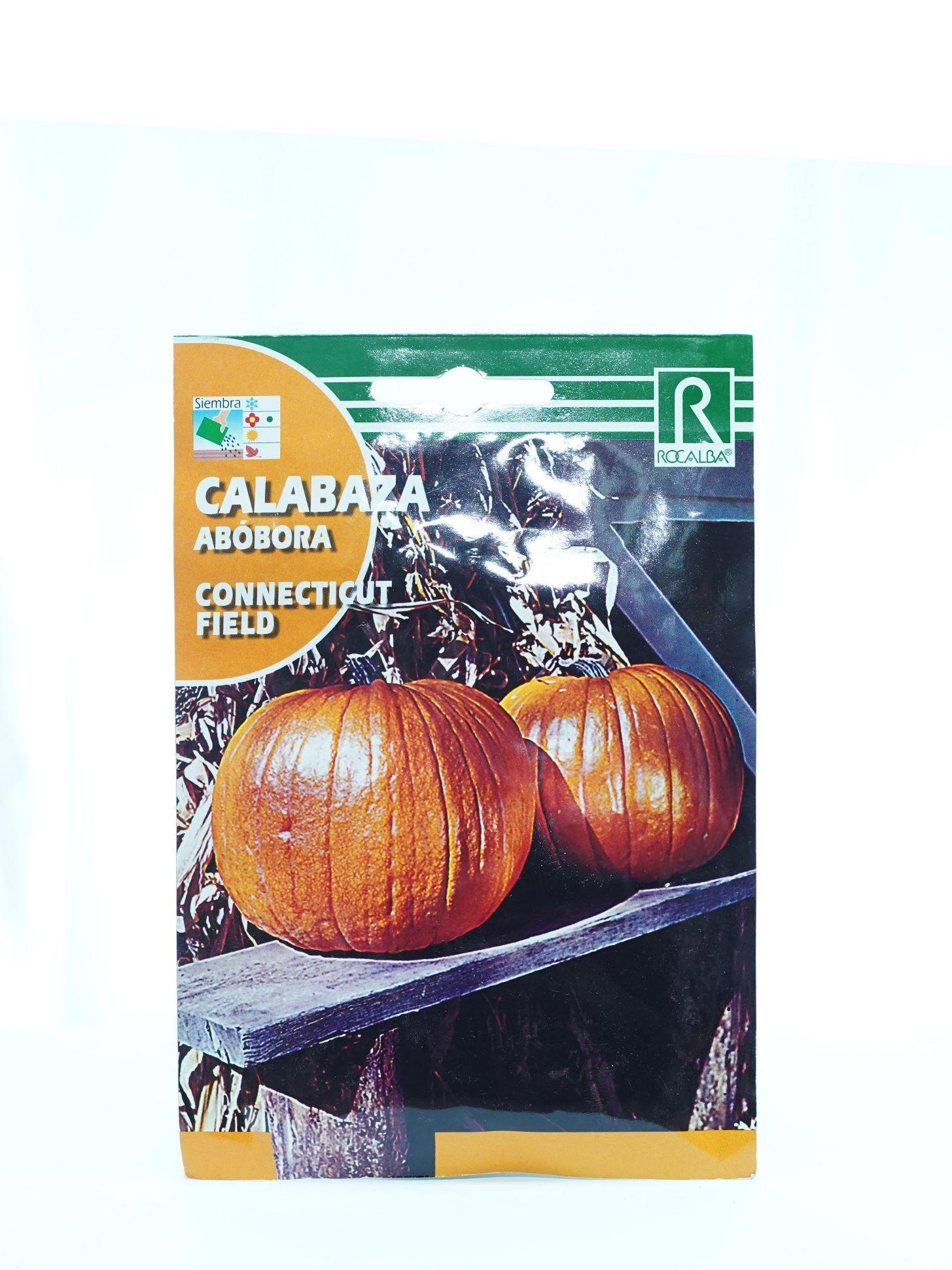 Rocalba Connecticut Field Pumpkin Seeds