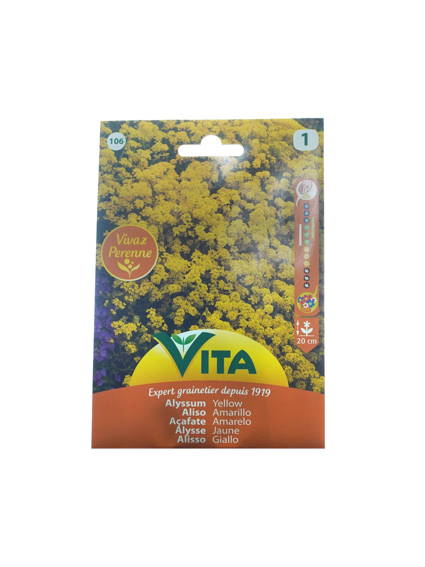 Vita Alyssum Yellow 'Seeds'