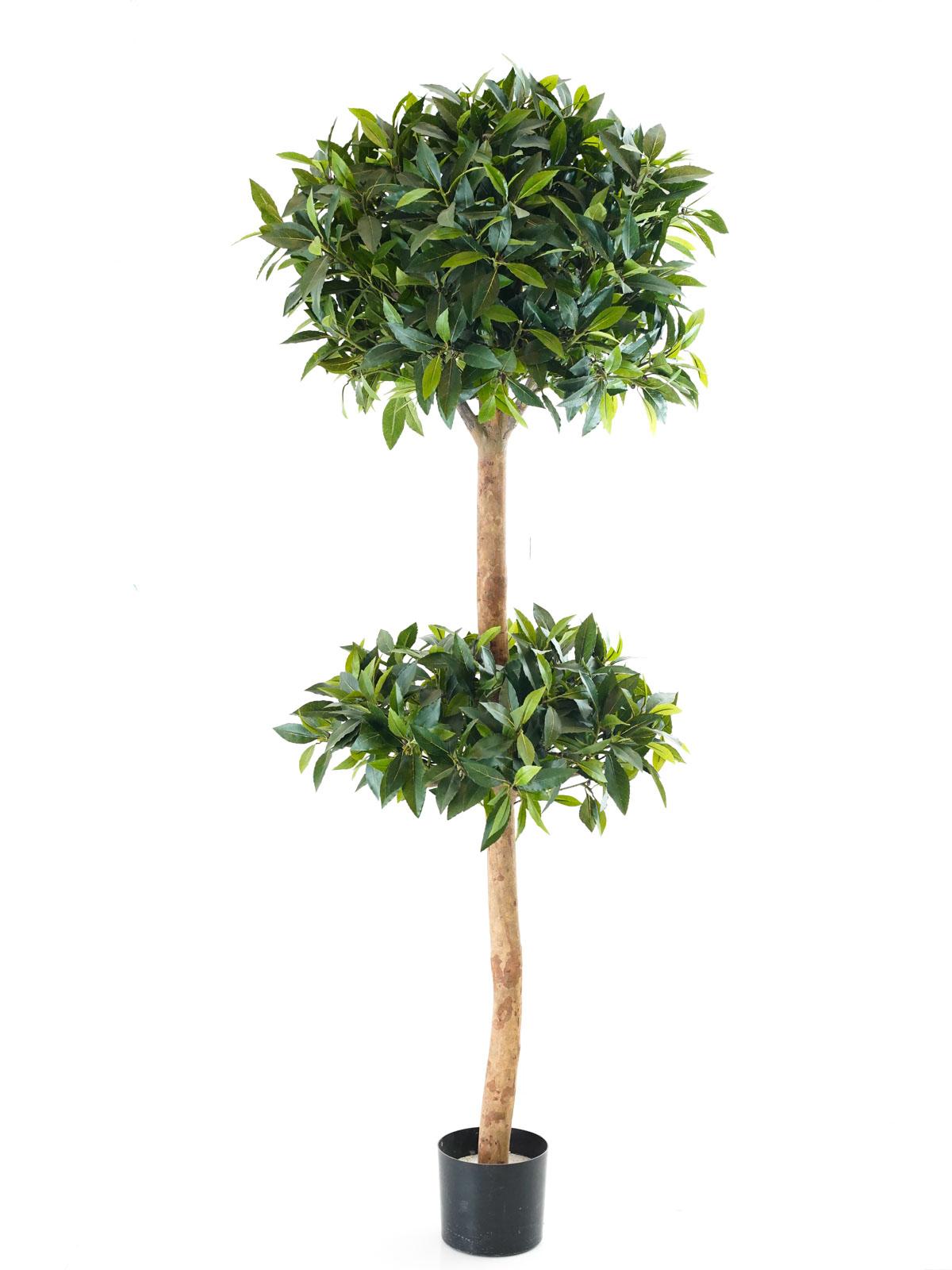 شجرة سويت باي بول - كبير نباتات اصطناعية