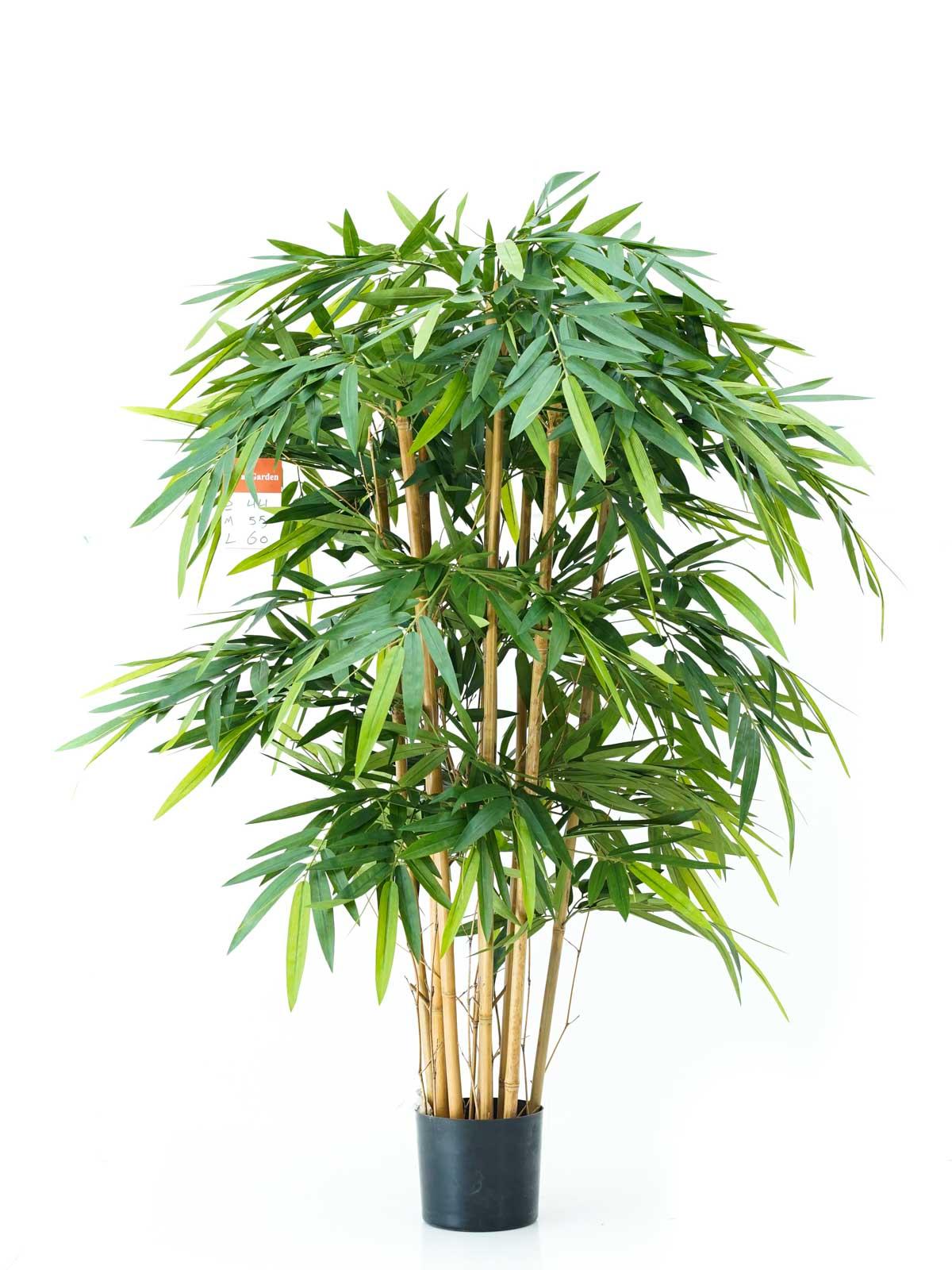 بامبو - كبير نباتات اصطناعية