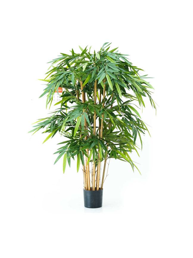 بامبو - وسط نباتات اصطناعية