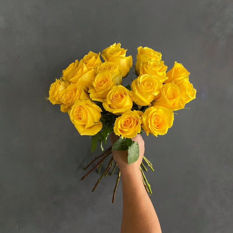 Roses - Yellow Wholesale Flowers