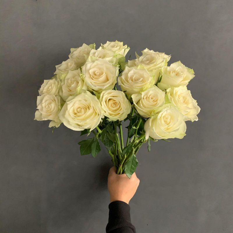 زهور أبيض ' الزهور بالجملة'