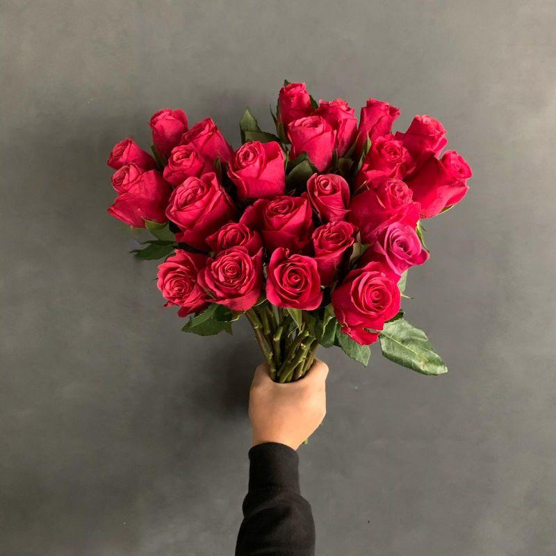 Roses Fushia Red & Pink Wholesale Flowers
