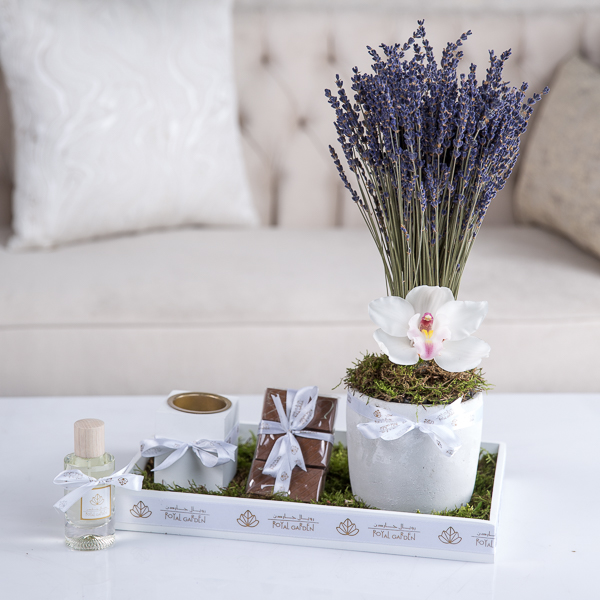 Lavender 'Flower with Base'